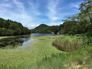 On the way from Benesse Area to Honmura by Ebike