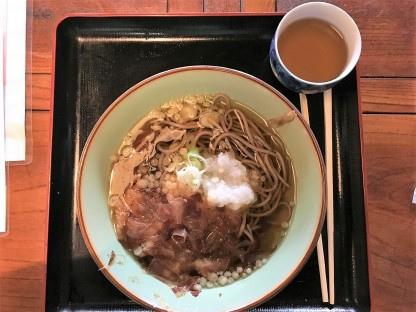 Oroshi Soba - very delicious (might not look like :)