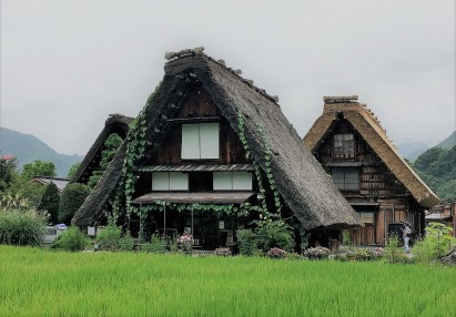 Shirakawa-gô houses