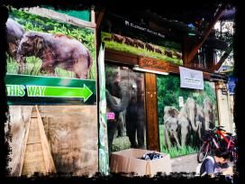 Starting point in Chiang Mai