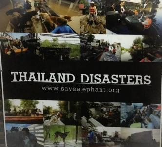 Info Sheet - 'Thailand Disasters'