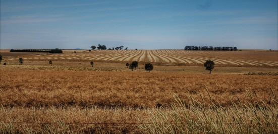 Farmland on the way to the Grampians